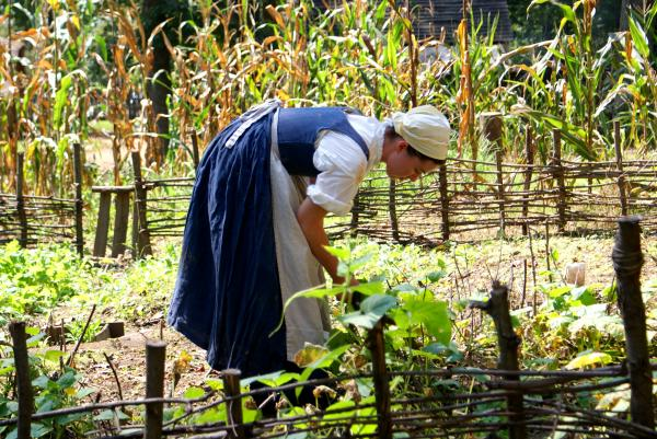The Farmer's Wife Would Have a Garden for Her Home and for Market If Possible